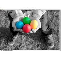 Photoshop' Ta Renk Ayrımı !