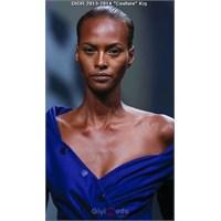 Dior 2013 Couture Elbiseleri