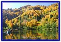 Türkiye deki   milli Parklarımız