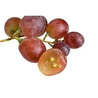 Üzüm Çekirdeği Neye Faydalı?