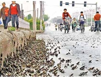 Deprem Habercisi Doğa Olayları