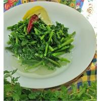 Turp Otu Salatası