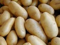 Patates Hakkında Bilmediklerimiz!