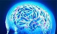 Hafızayı Güçlendiren 4 Gıda
