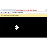 Google Açıkladı Adobe Shockwave Eklentisi Hatası Ç