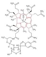 B-12 Vitamininin Faydaları Nelerdir?