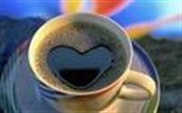 Kahve Falına Nasıl Bakarız