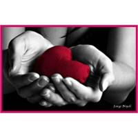 İnsanı Yaşatan Sevgidir