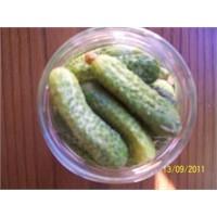 Tata'nın Organik Mutfağı - Organik Turşu