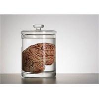 Beynimiz Bir Kavanozda Ne Kadar Yaşayabilir?