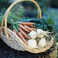 Organik Gıdalar Ne Kadar Güvenli