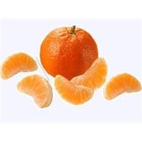Mandalina (Citrus Reticulata)