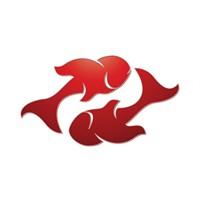 Balık burcu erkeğinin tipik özellikleri