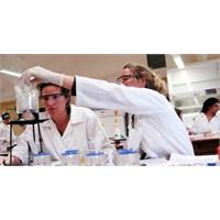 Kimya Mezunlarının İş Bulma Olanakları