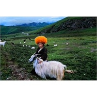 Tibet Ve Himalayalar