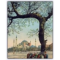 İstanbul'un Uğursuz Ağacı | Kanlı Çınar