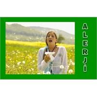 Bahar Alerjisi Neden Arttı
