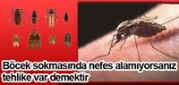 Böcek Sokmasında Nefes Alamıyorsanız Tehlike Var D