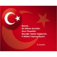 Türk Bayrağı Nasıl Oluştu