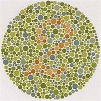 Renk Körleri Web'i Nasıl Görüyor?