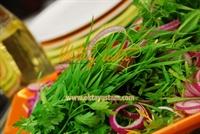 Yeşil Filiz Salatası