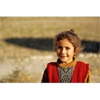 Mardin, Midyat Ve Yukarı Mezopotamya