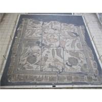 Mozaikler Diyarında