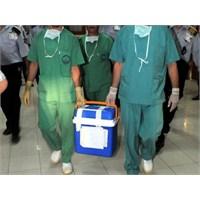 Organ Bekleyen Hasta Sayısında Artış
