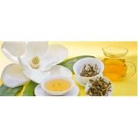 İnsülin Direncine Karşı Etkili Çay