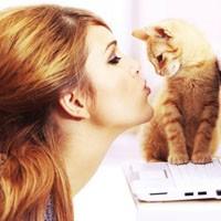 Kediye alerjisi olanlar ne yapmalı