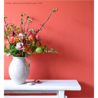 Somon Rengi İle Duvarlar Da Farklılık!