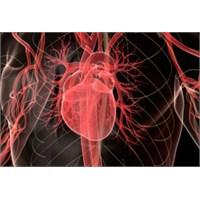 Beynimiz Kalbimizi Kandırıyor Olabilir Mi?
