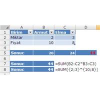 Dizi Formulleri – Array Formulas