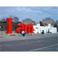 Eğlenceye Göbekten Dal: Amsterdam