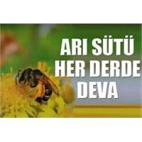 Arı Sütüyle Gelen Güzellik!