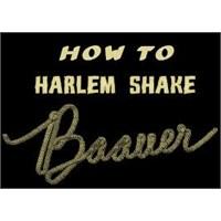 Baauer - Harlem Shake / İzle / Dinle/ Sözleri