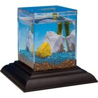 Eco-aquarium