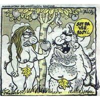 3 Evli Kadın 3 Karikatür