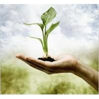 Çevre Mühendisliği Nedir? Görev Alanları Nelerdir?