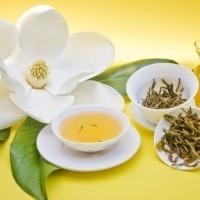 Bitki Çayları İle Gelen Sağlık