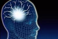 Ahmet Maranki Beynin Düşünce Gücünün Ve Canlılığın