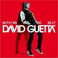 David Guetta 27 Nisan 2013'te İsntabul'da