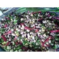 Davet Masalarından Salata Çeşitleri