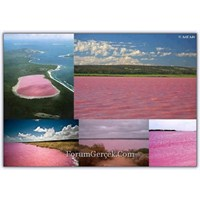 Hillier Gölü- Avustralya