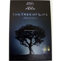 Hayat Ağacı ( Oscar 2012 )