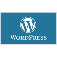 Wordpress Hakkında Bilmedikleriniz ?