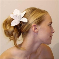 Evde Saç Yapımı-dağınık Topuz Nasıl Yapılır?