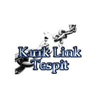 Kırık Link Tespiti