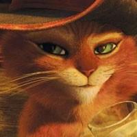 Çizmeli Kedi'nin Sosyal Medya Tanıtımları Başladı