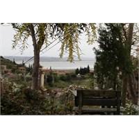 Söke'nin Deniz Kenarı Köyü Doğanbey